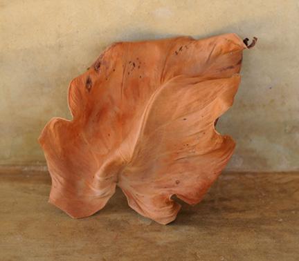 Georgina Frankel 3 Red Leaf